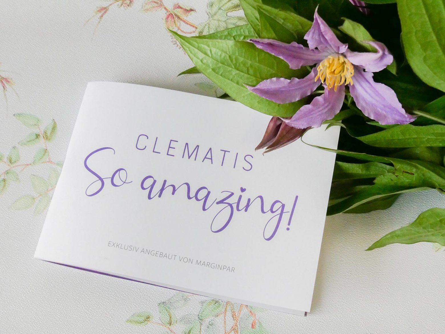 Clematis So Amazing Guide